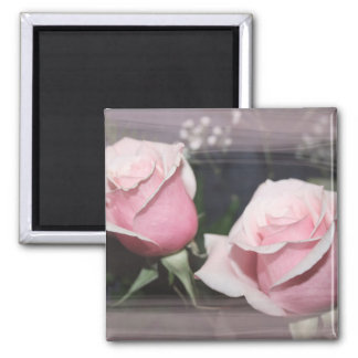 Faded pink rose image sketchy overlay 2 inch square magnet