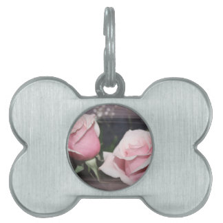 Faded pink rose image sketchy overlay pet tag