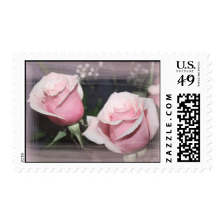 Faded pink rose image sketchy overlay postage stamps
