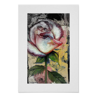 FADED ROSE by CR SINCLAIR Posters