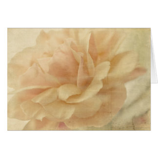 Faded rose empty card