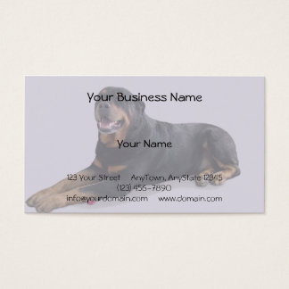 Faded Rottweiler Laying Down on Grey Background Business Card