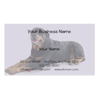 Faded Rottweiler Laying Down on Grey Background Business Card Template