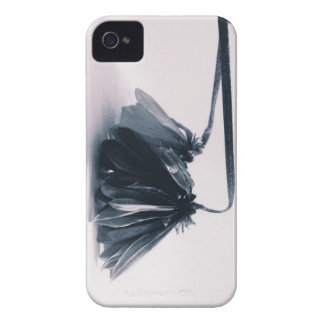 Fading Away I iPhone 4 Covers