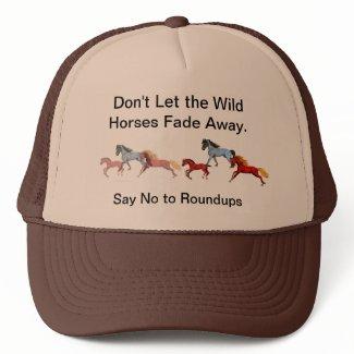 Fading Away Wild Horses