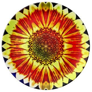 Fae Spirit Healing Mandala Plate