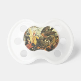 Faeries and Robin's Nest Pacifier