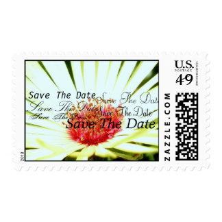 Faery Garden Stamp