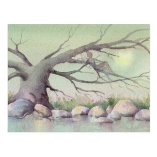 FAIERIE in the TREES by SHARON SHARPE Post Card
