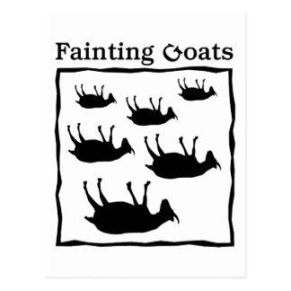 Fainting Goats Postcard