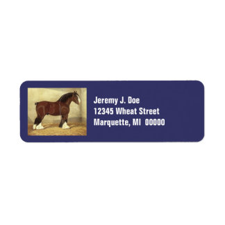 Fair Daze Clydesdale Draft Horse Address Labels