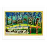 Fairbanks, Alaska - Large Letter Scenes Post Cards