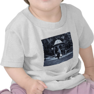 Fairmount Park Vintage Philly ca. 1900-1910 T-shirt