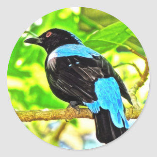 Fairy Bluebird Photo Painting Classic Round Sticker