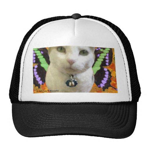 Fairy Cat Hat