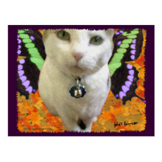 Fairy Cat Postcard
