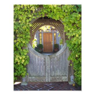 Fairy Door Photo Print