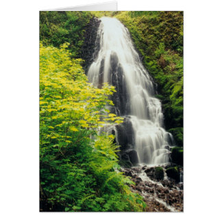 Fairy Falls Greeting Cards