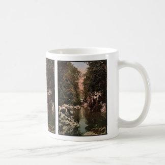 Fairy Glen, Bettws-y-Coed (i.e. Betws), Wales rare Classic White Coffee Mug
