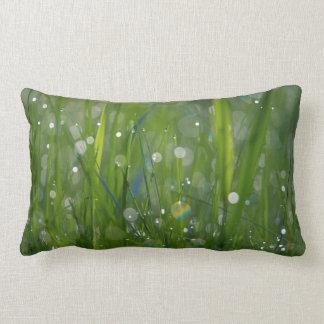 Fairy Land Throw Pillows
