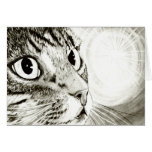 Fairy Light Tabby Cat Fantasy Art Card