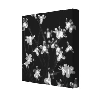 Fairy Lights, Blacks & Whites Canvas Print