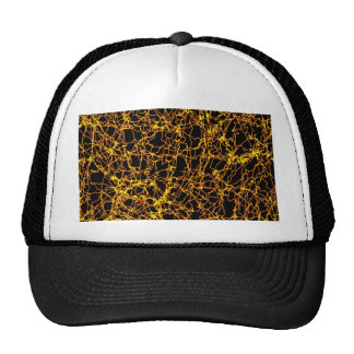 fairy lights, golden trucker hat