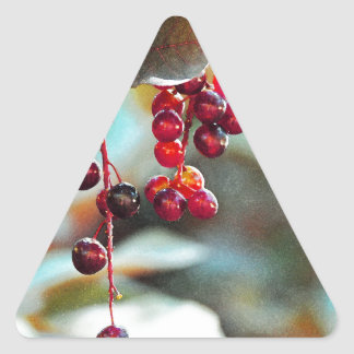 Fairy Lights with Cherries - Watercolor Style Triangle Sticker