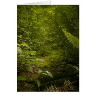 Fairy Pathways Fantasy Photograph Greeting Card