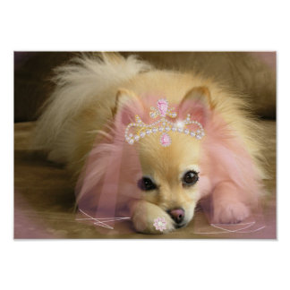fairy princess dog with diamond crown poster