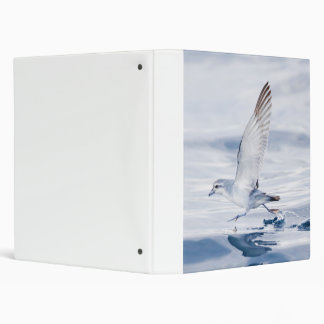 Fairy Prion Pachyptila Turtur Sea Bird Running 3 Ring Binder