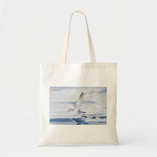 Fairy Prion Pachyptila Turtur Sea Bird Running Budget Tote Bag