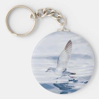 Fairy Prion Pachyptila Turtur Sea Bird Running Basic Round Button Keychain