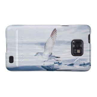 Fairy Prion Pachyptila Turtur Sea Bird Running Galaxy S2 Cover