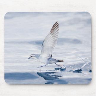 Fairy Prion Pachyptila Turtur Sea Bird Running Mouse Pad