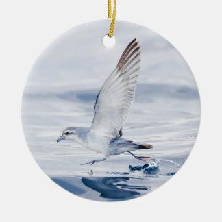 Fairy Prion Pachyptila Turtur Sea Bird Running Christmas Ornament