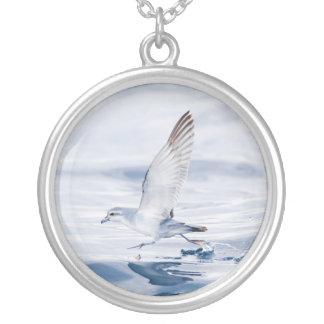 Fairy Prion Pachyptila Turtur Sea Bird Running Round Pendant Necklace