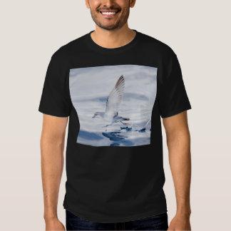 Fairy Prion Pachyptila Turtur Sea Bird Running Shirt