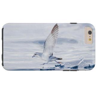 Fairy Prion Pachyptila Turtur Sea Bird Running Tough iPhone 6 Plus Case