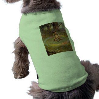 Fairy Ring Dog Clothes