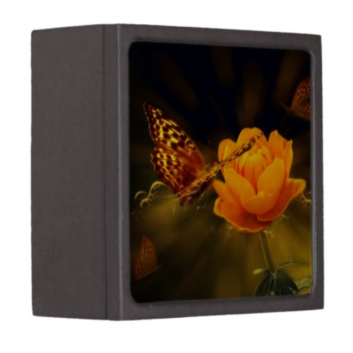 Fairy Tale Butterfly Premium Gift Box
