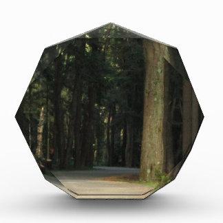 Fairy Tale Road Acrylic Award