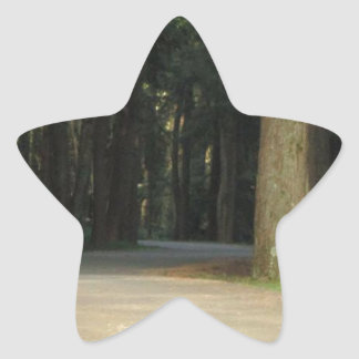 Fairy Tale Road Star Sticker