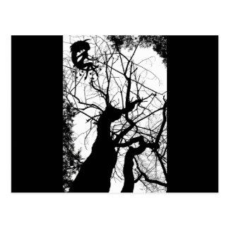 FAIRY WEBBY TREE B&W POSTCARD