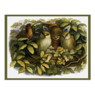 """Fairy with Owls"" by Doyle Postcard"