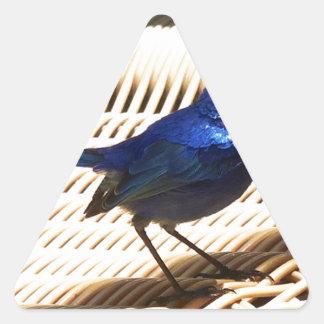 Fairy Wren Triangle Sticker