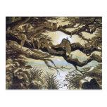 Fairyland: Asleep in the Moonlight Postcards