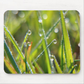 Fairyland ~ Macro Grass & Dew Drops Abstract Mouse Pad