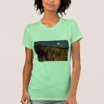 Fairyland, parque nacional del barranco de Bryce, Camiseta