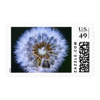 Fairy's Orchestra Postage
